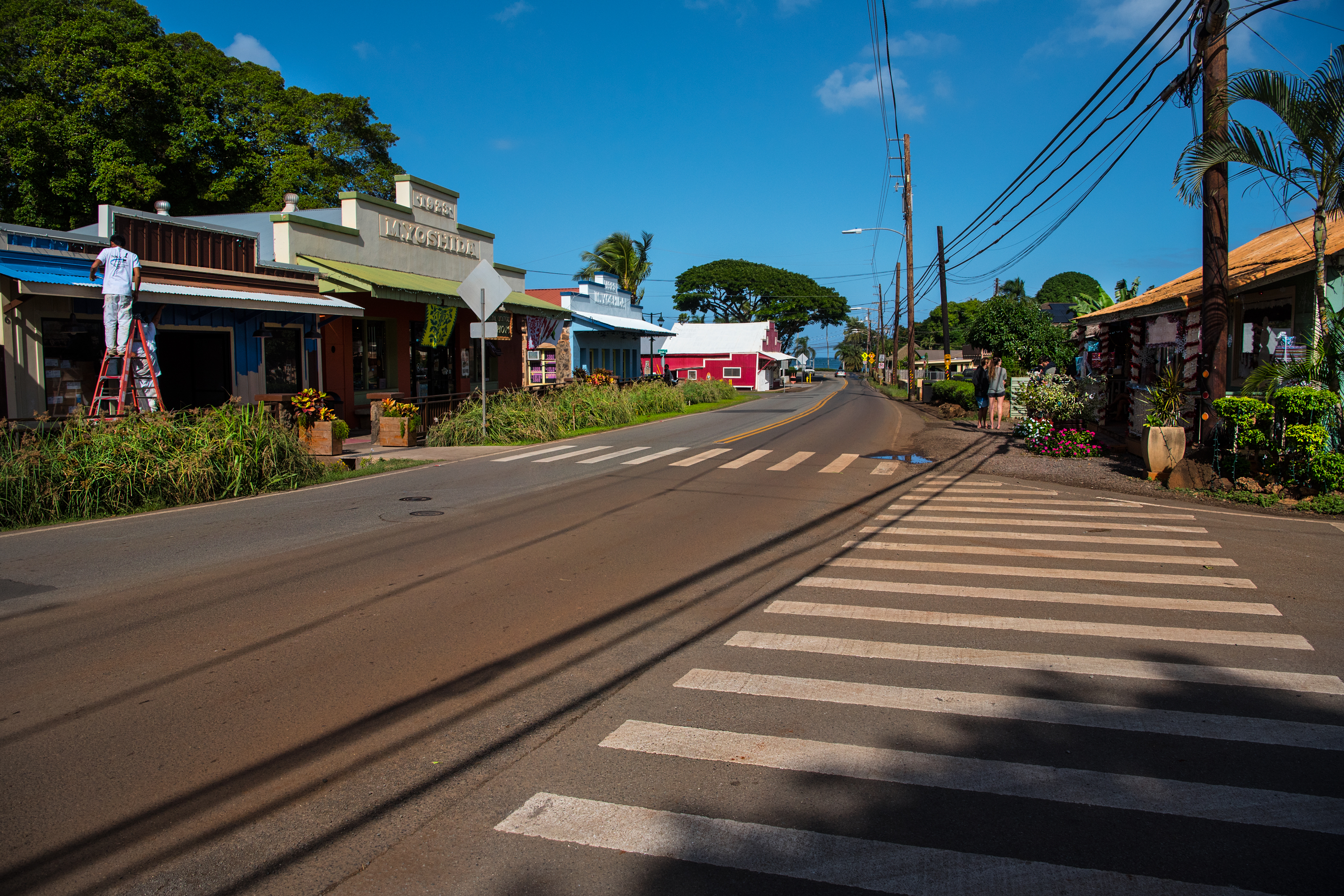 Hometown Haleiwa