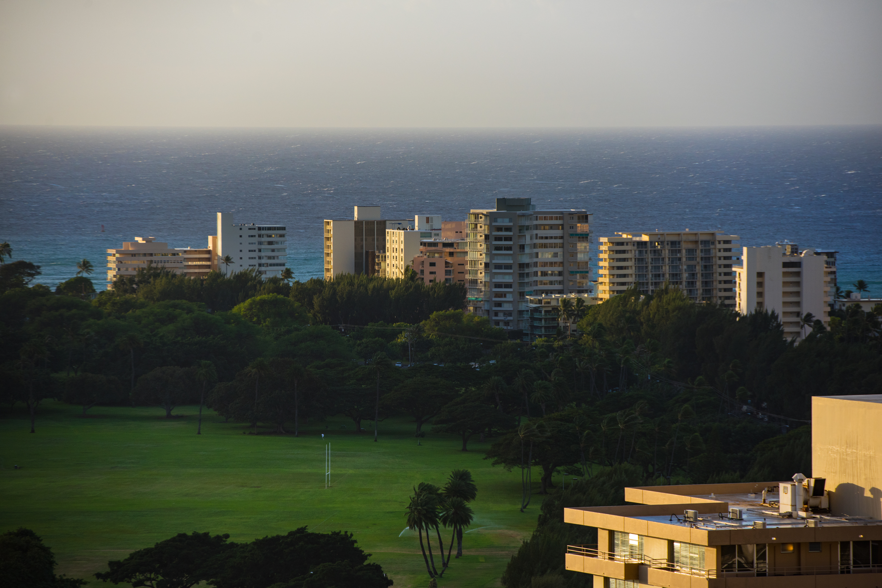 Morning Scene, Kapiolani Park