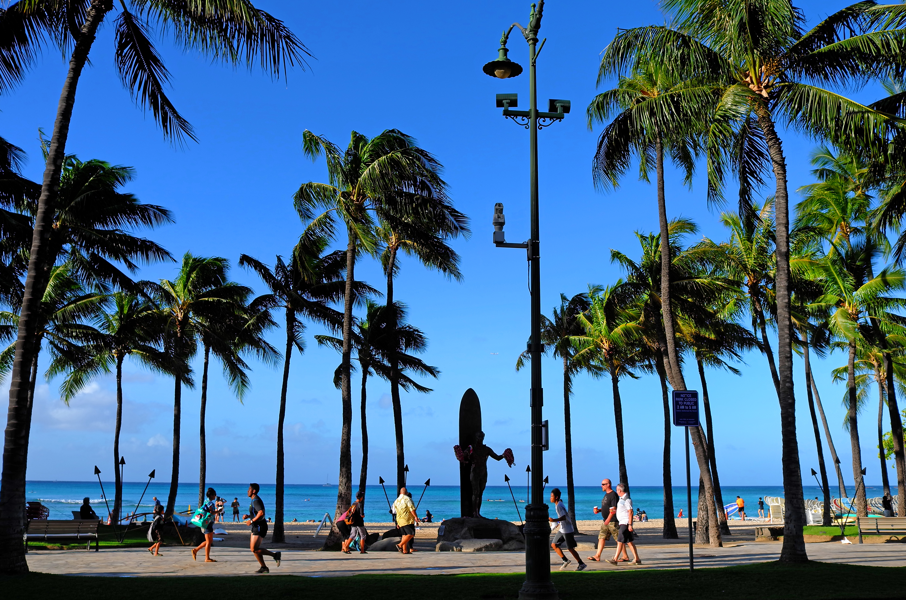 Morning Scene, Waikiki Beach