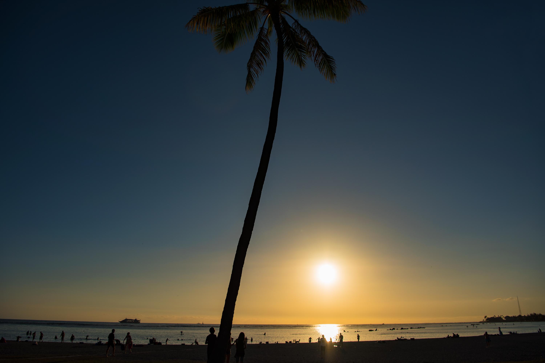Alamoana Sunset