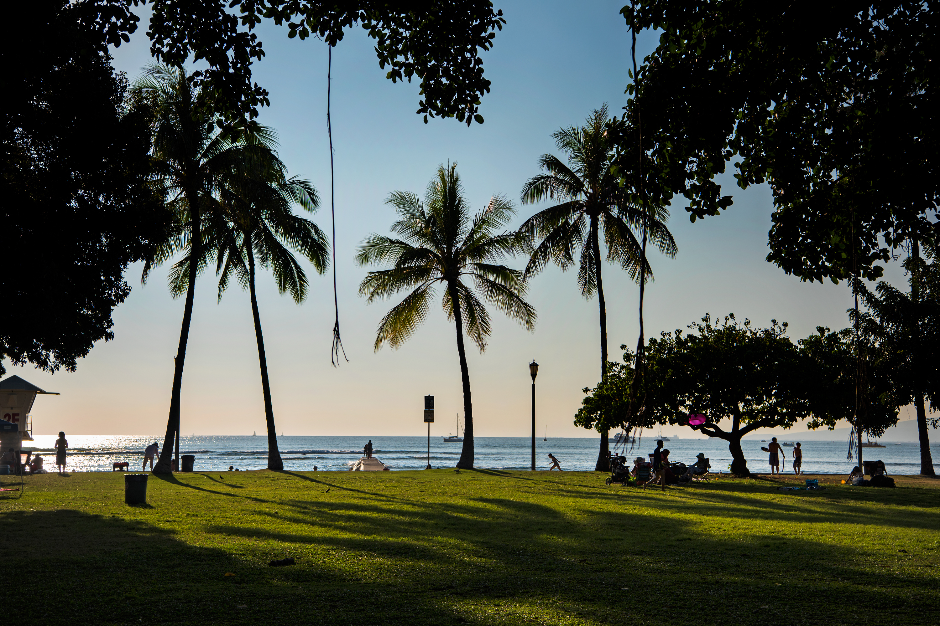Late Afternoon, Kapiolani Park