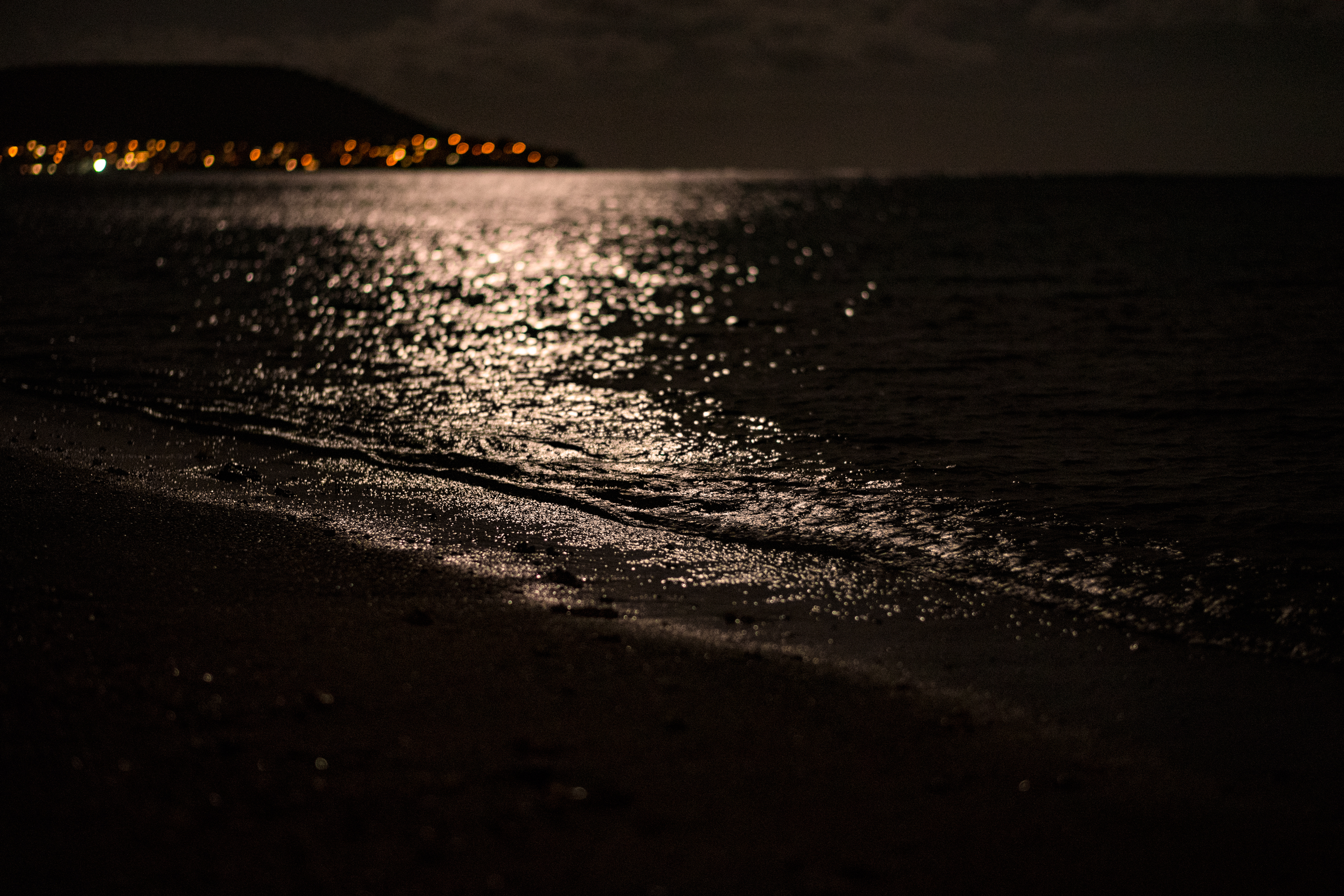 Moonlight Shore