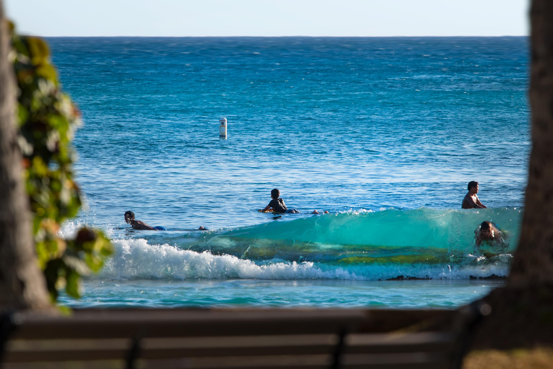 Waikiki Surf Kids
