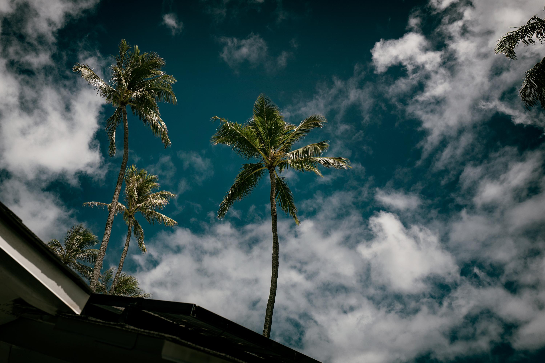 Island Sky