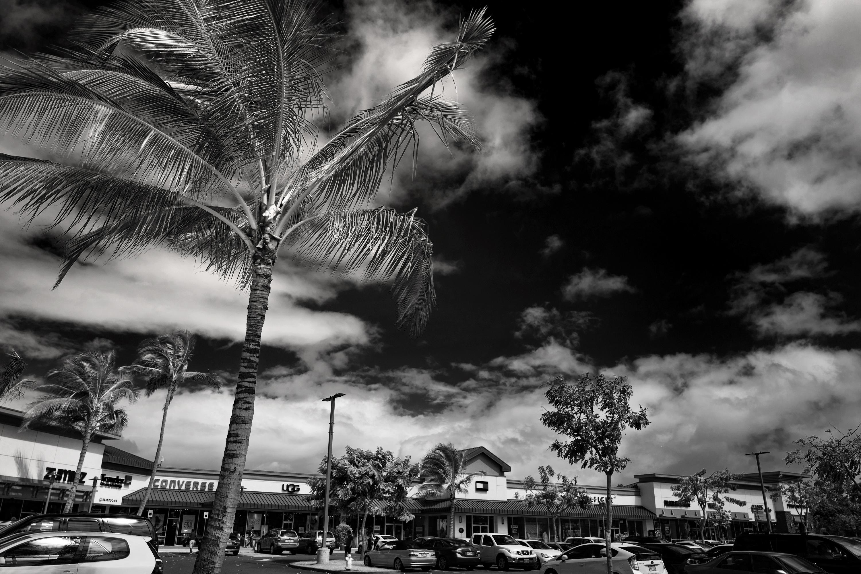 Monochrome Waikele