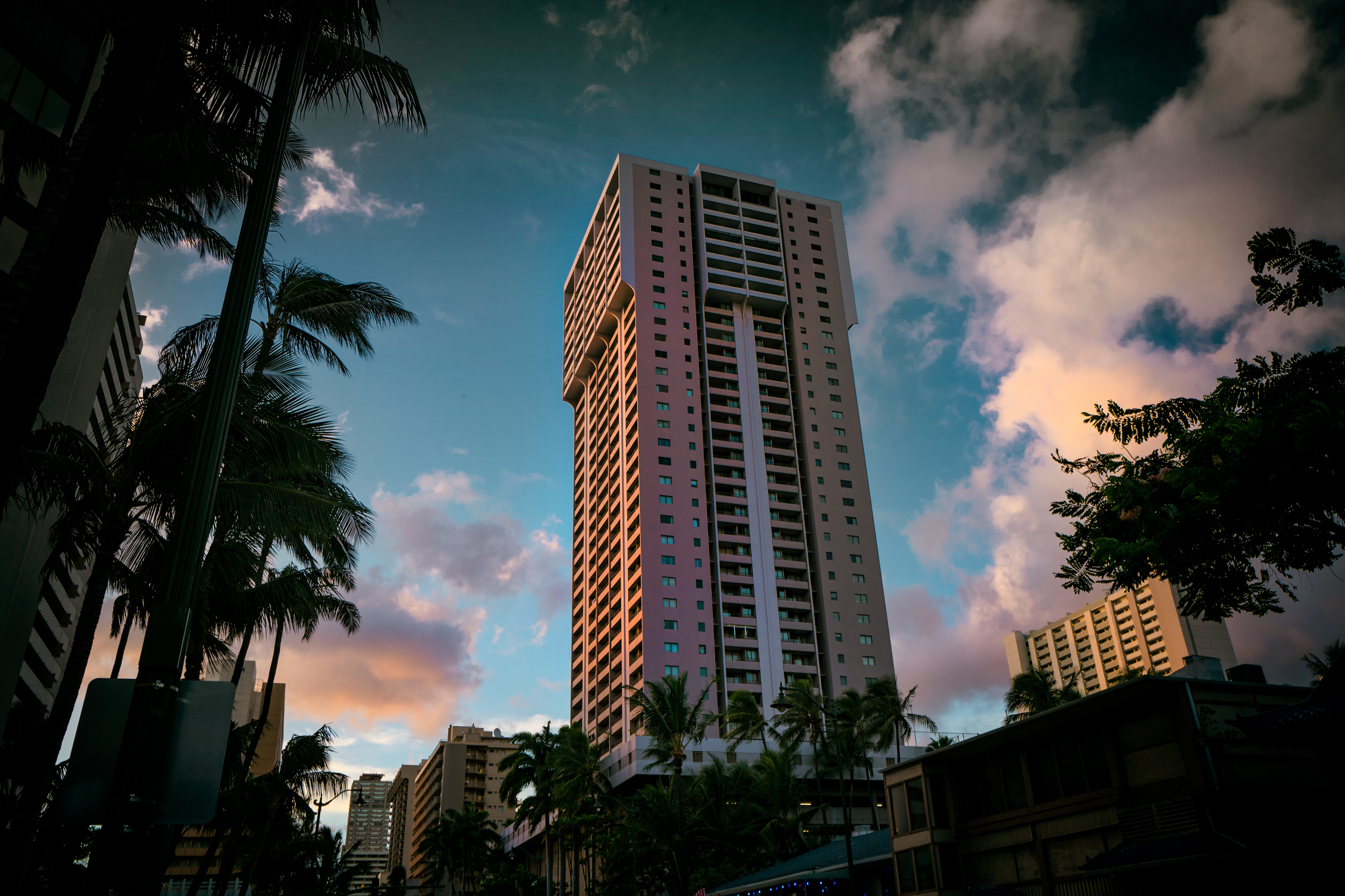 Pink Colored Royal Kuhio