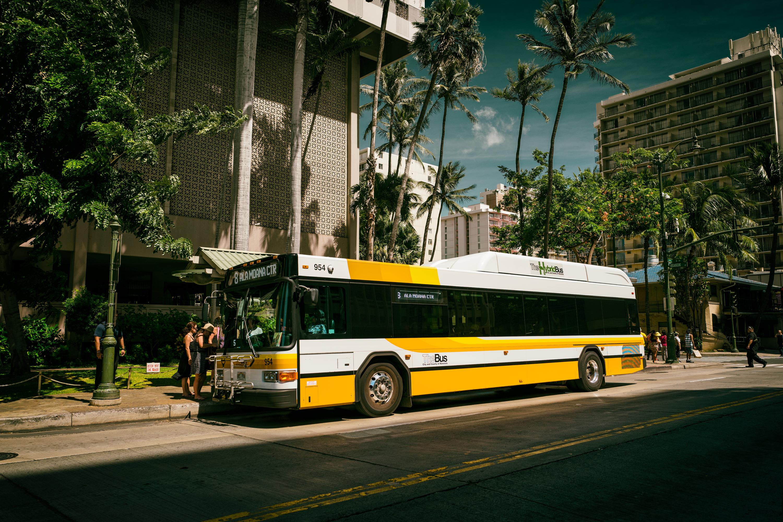 The Bus, Kuhio Ave.