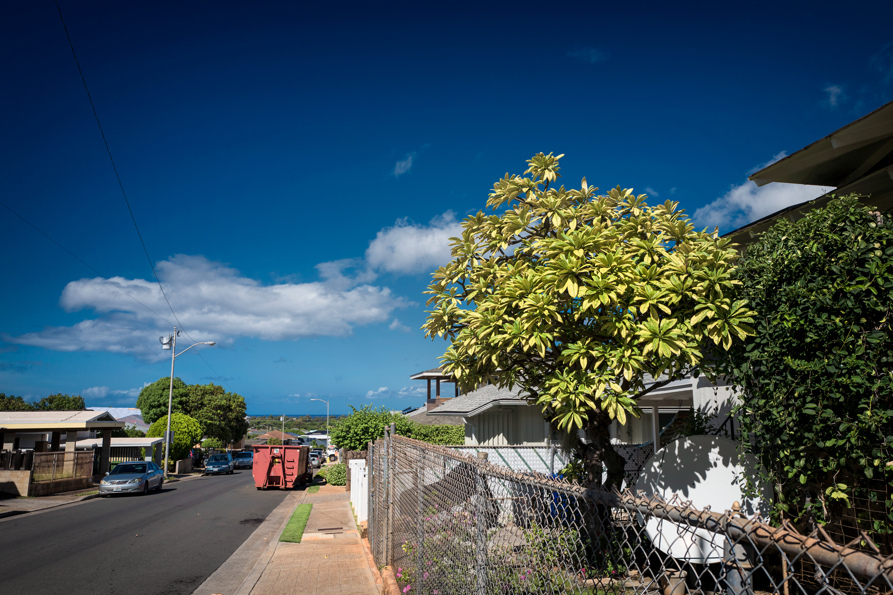 Clear Morning Lights, Kaimuki