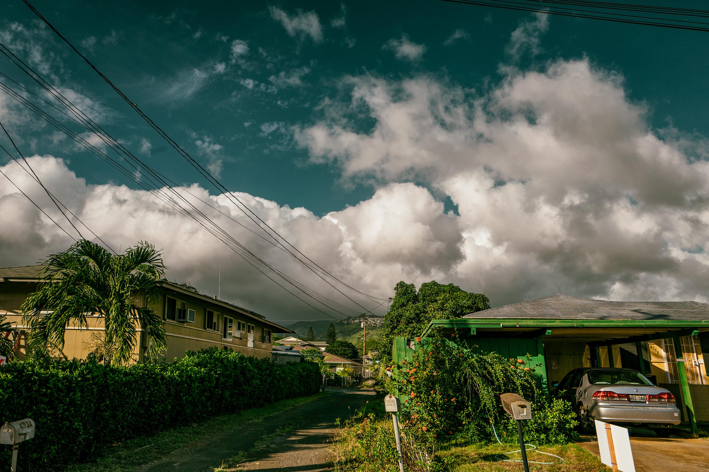 Local Scene, Kaimuki