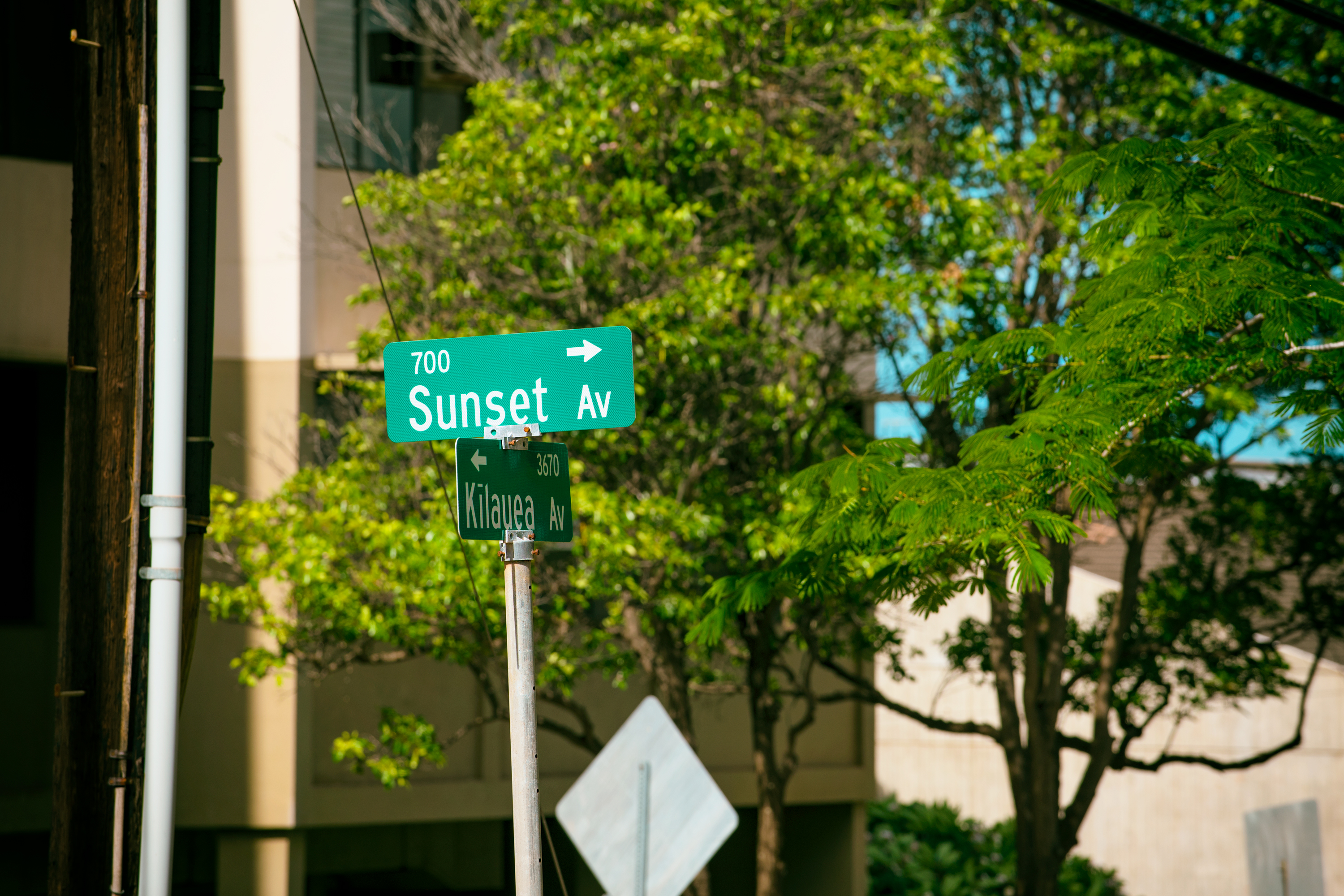 Street Sign, Sunset Ave.