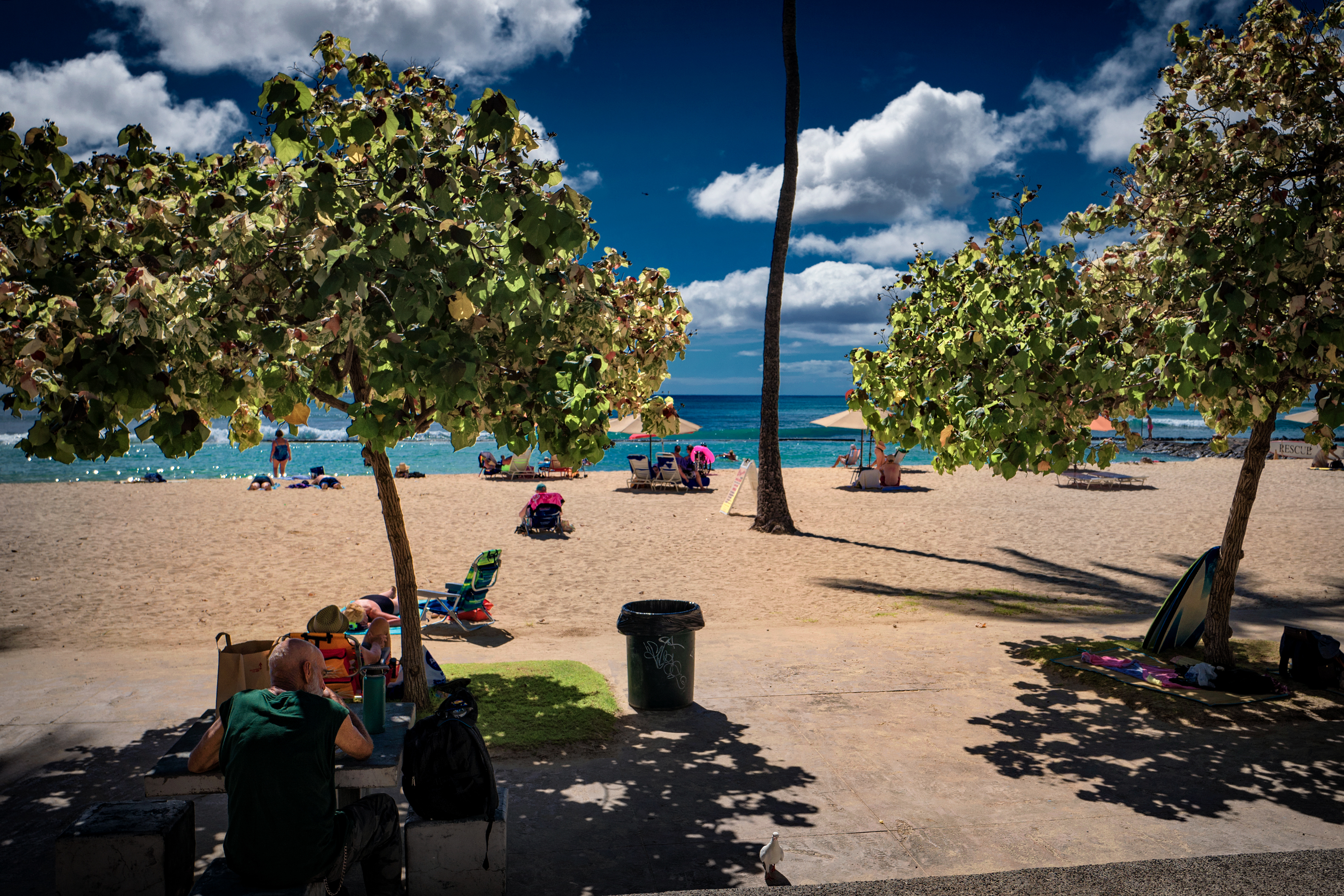 Waikiki Beach Daylight