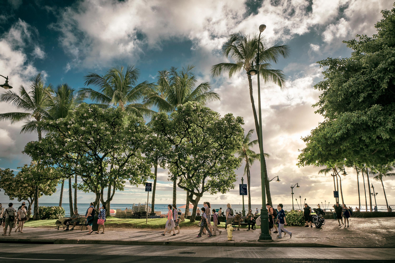 Kalakaua Ave. Waikiki