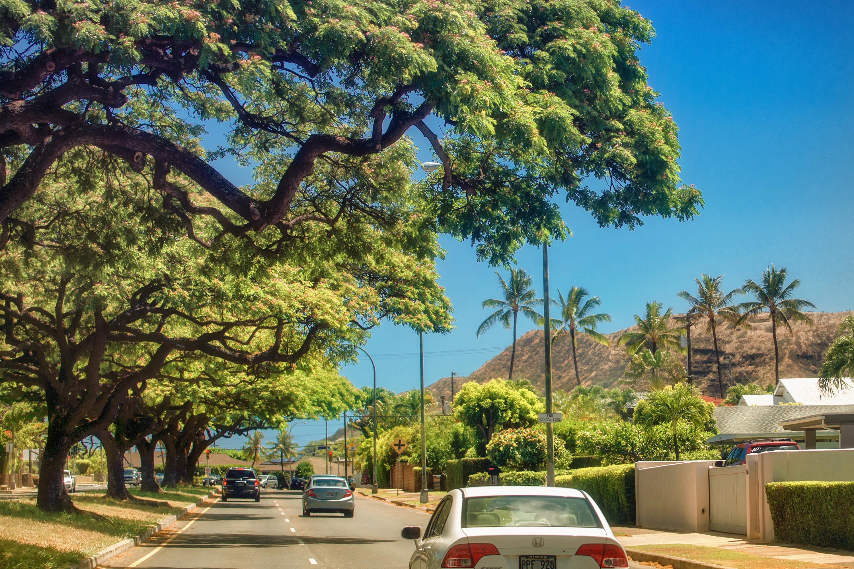 Kilauea Ave. Kahala