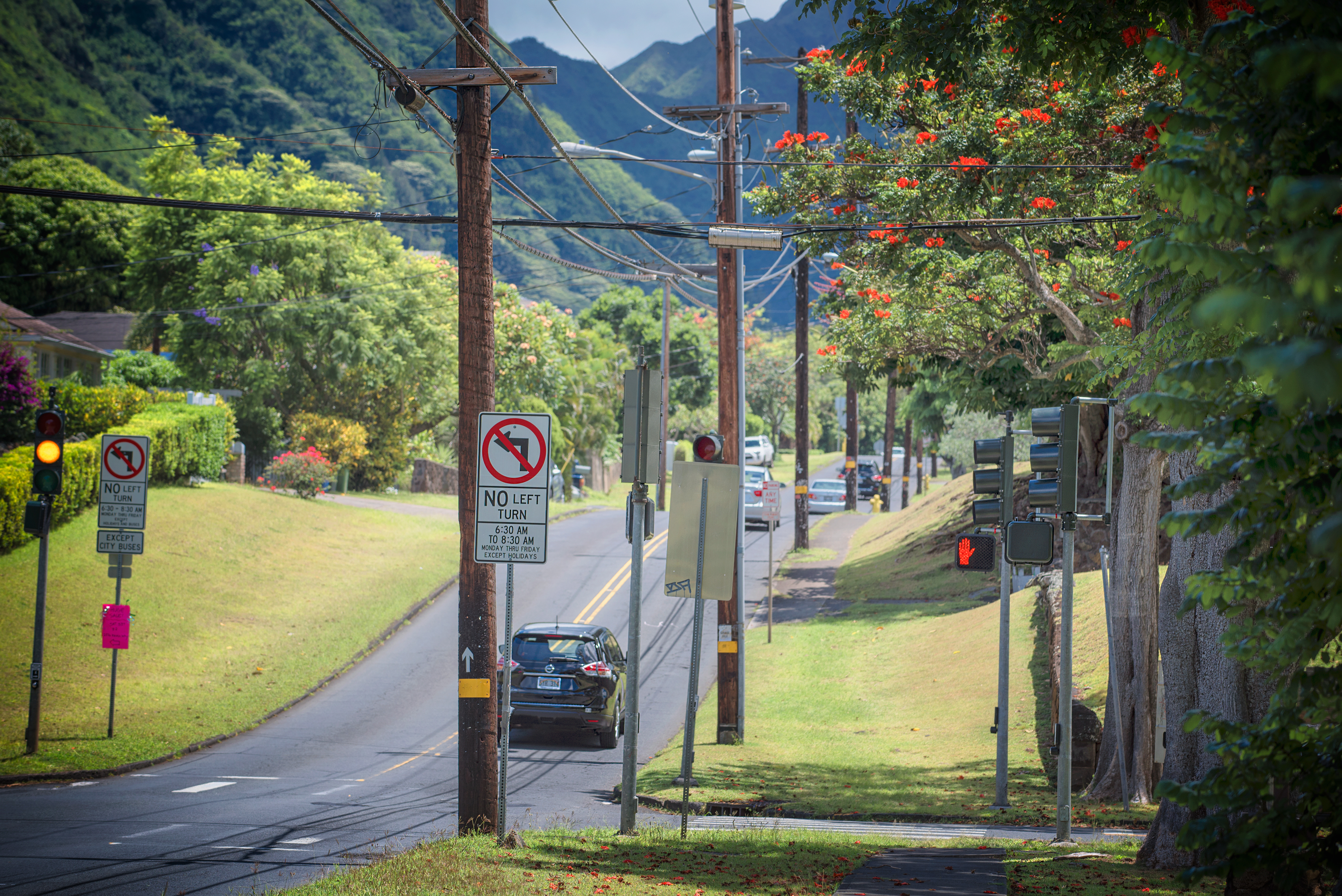 University Ave. Manoa