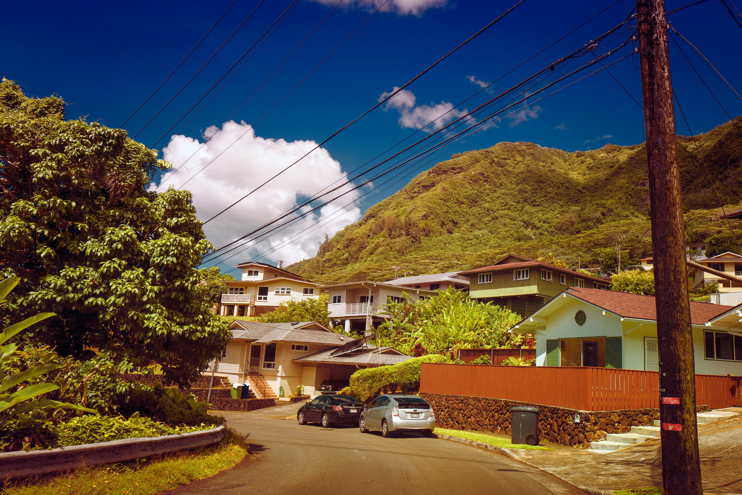 Local Scene, Manoa