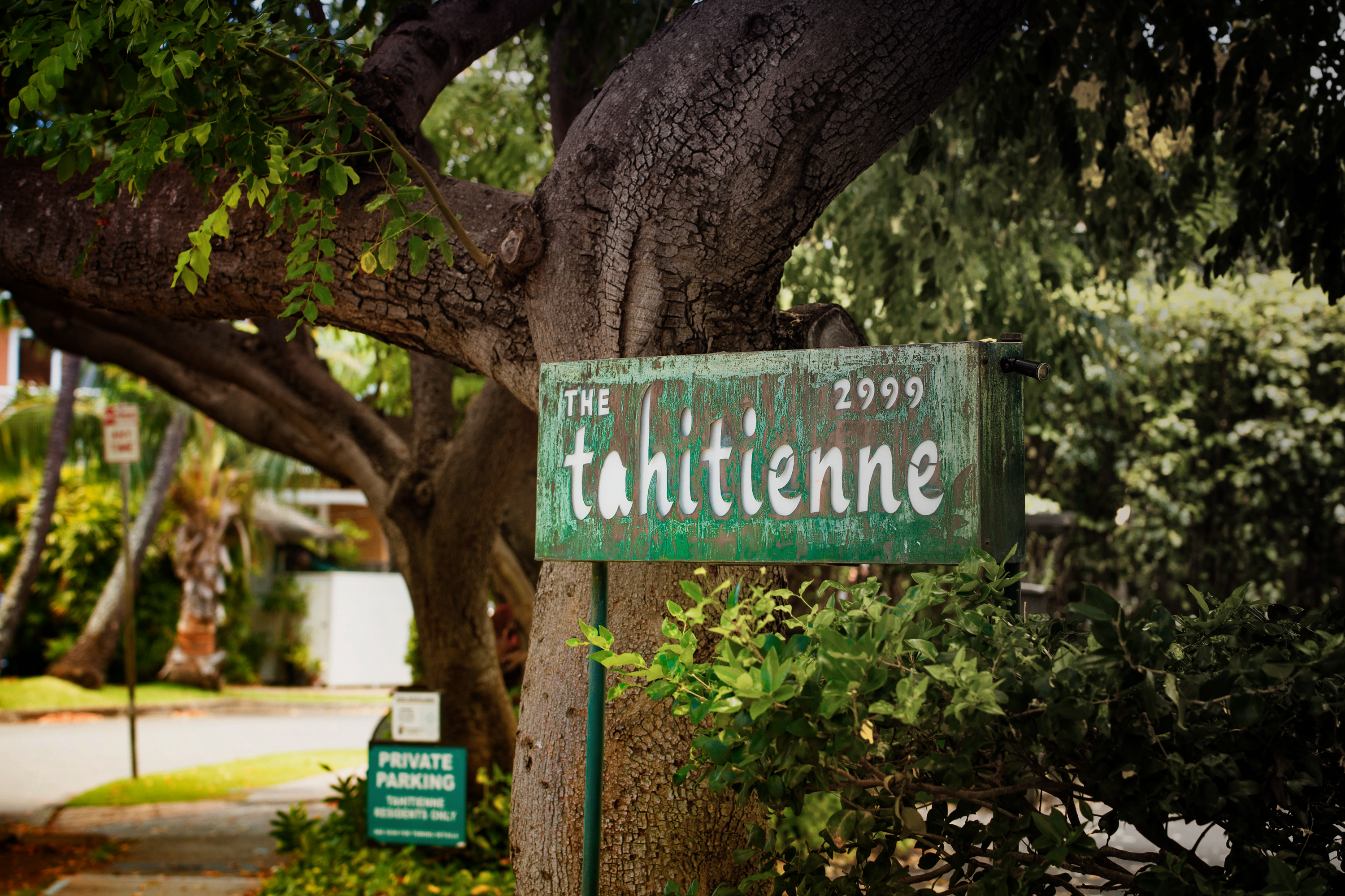 The Tahitienne