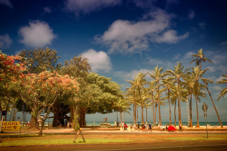 Queens Beach Park