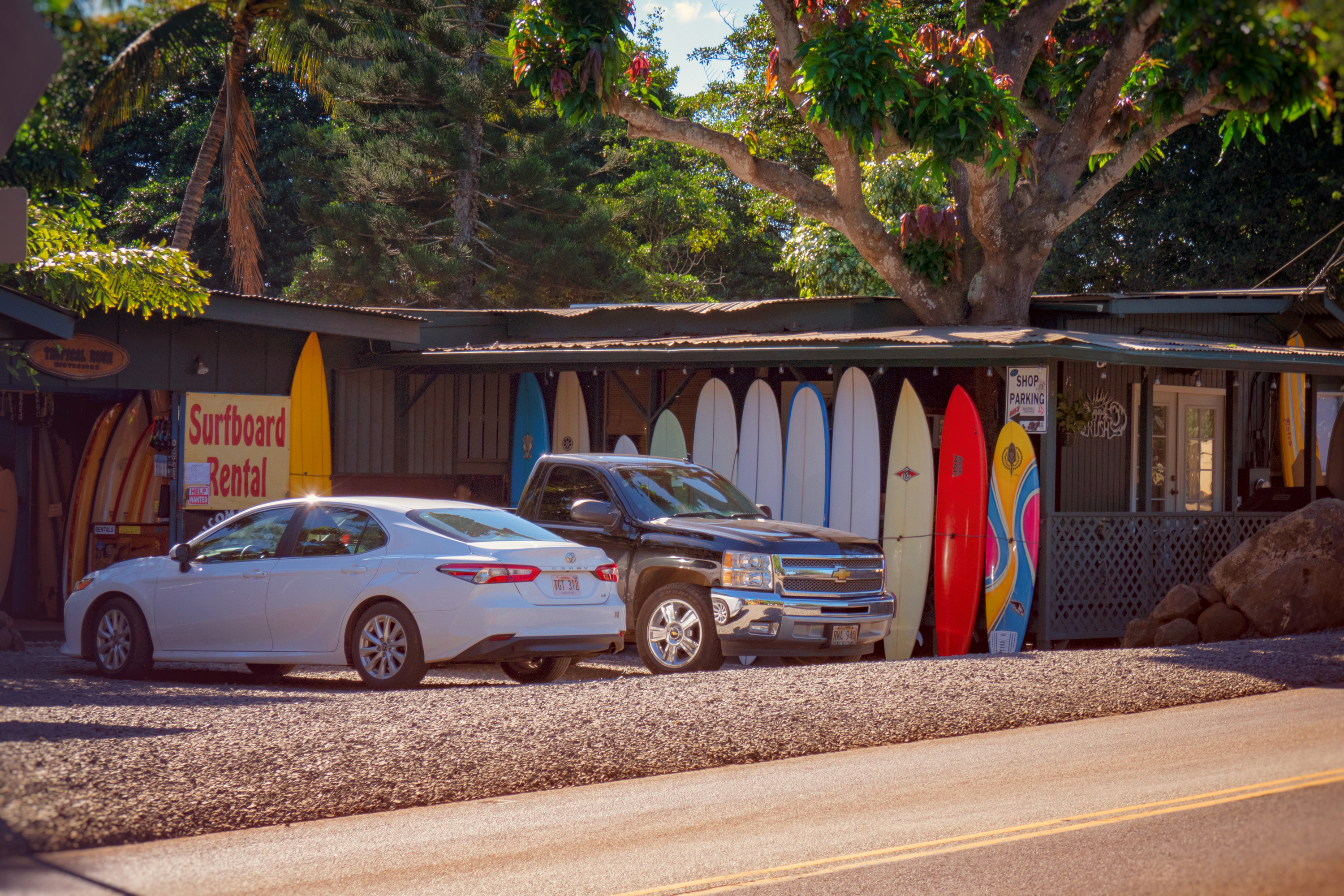 Surf Town